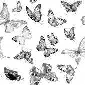 pattern beautiful black butterflies set