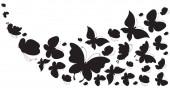 černý motýl, izolované na bílém