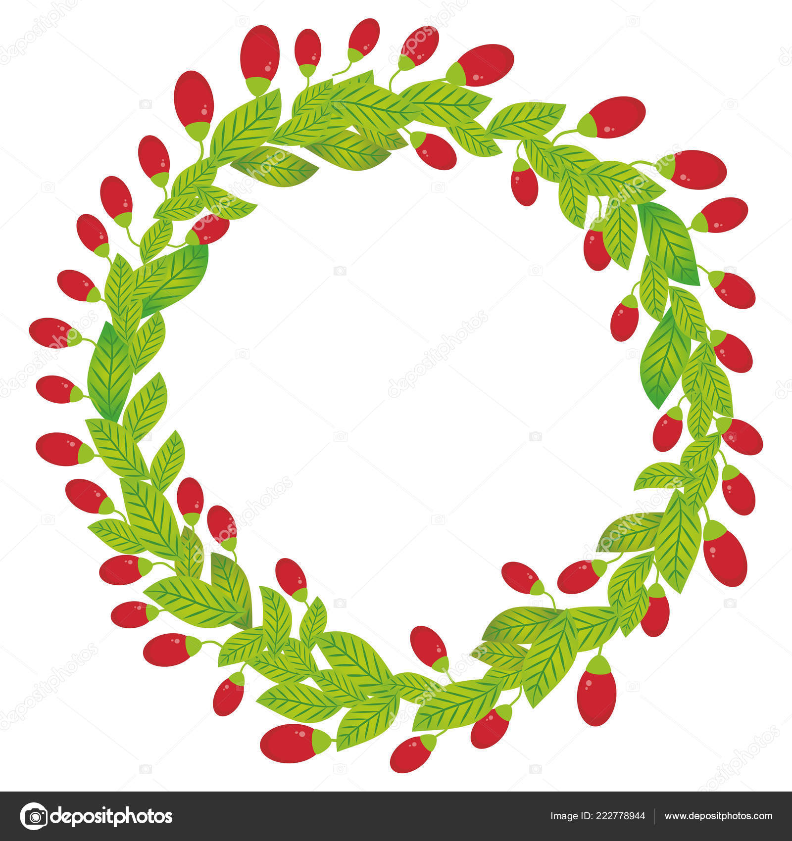 Wreath Green Leaves Red Goji Berry Fresh Juicy Berries Isolated