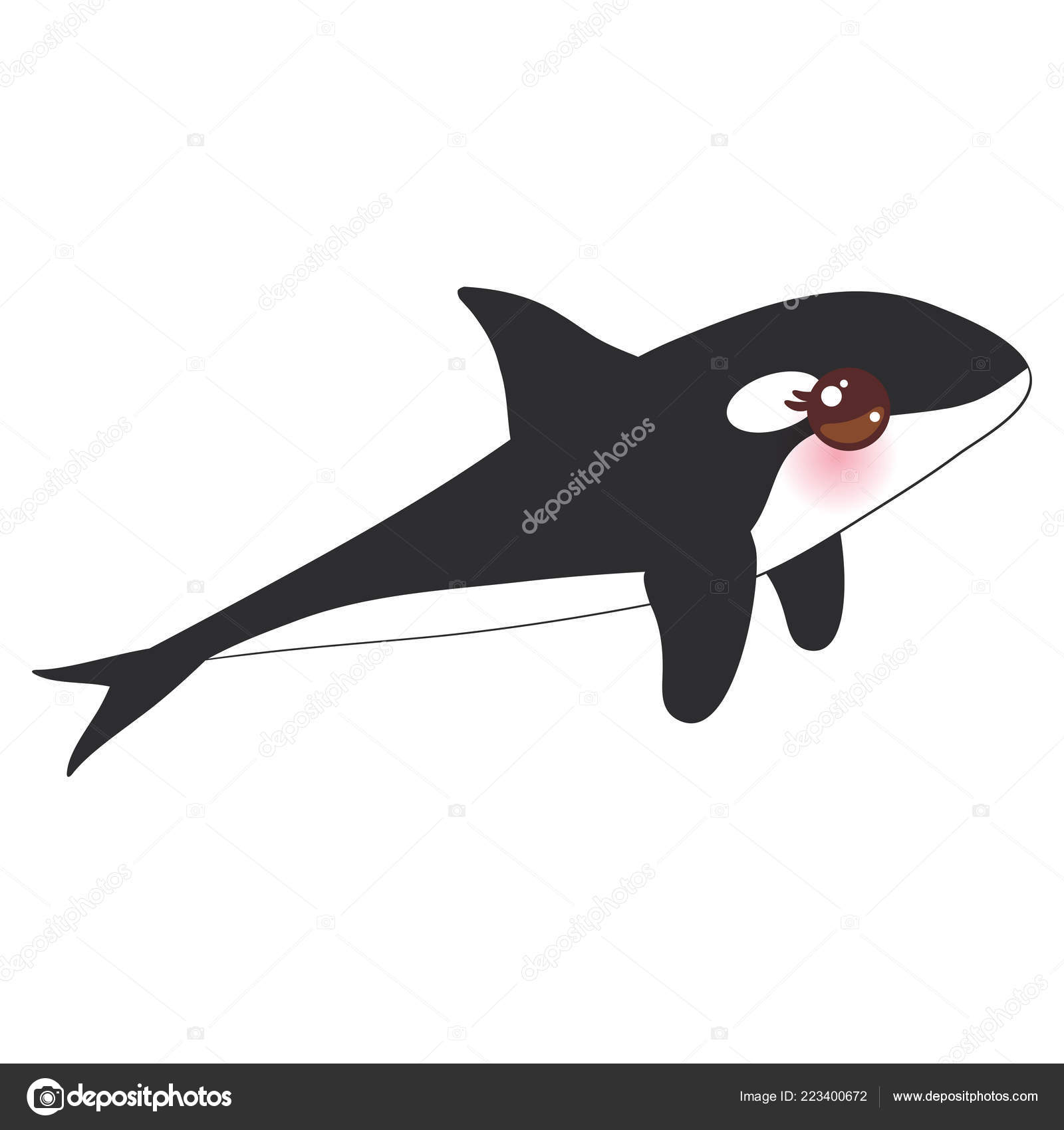 Cartone Animato Grampus Orca Balena Assassino Lupo Mare Kawaii Con