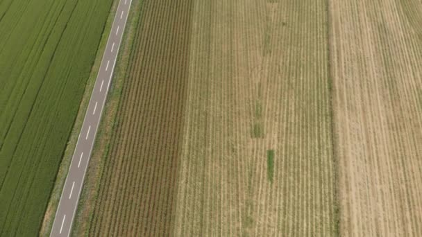 tractor working on cultivated fields farmland, agriculture occupation, top down view