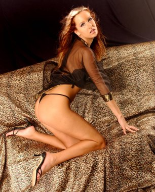 Celebrity student posing on golden leopard satin sheet - Black sheer bra and Panty Lingerie  - Barton wind blown Brunette with Hair Streaks - Active Jessica Look - Sultry sexy outfits with dark background copy space -Pink Lips and gloss Light makeup