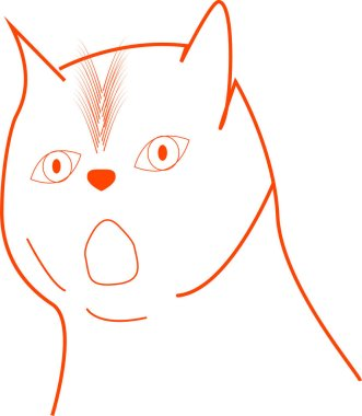 The cat is drawn in outline and very surprised.