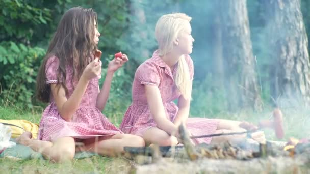 Two young women in pin up style having fun at a picnic in the park in the sunset. Summer, holidays, vacation, happy people concept - smiling girlfriends. Girlfriends on picnic.