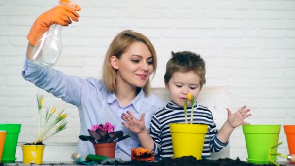 Mother and son are watering planted flowers in the summer. Concept of seedlings.