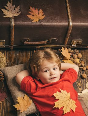 Child advertise your product and services. Cute little child boy are getting ready for autumn. Kid lies laying his hands behind head and resting on wooden floor in golden leaves.