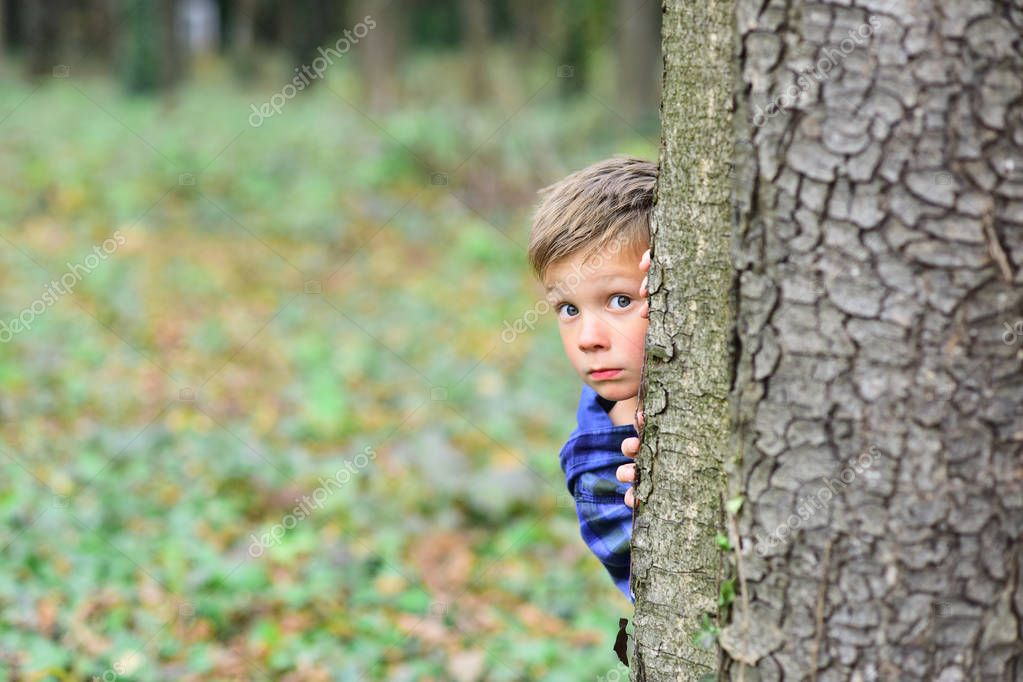 Each day holds a surprise. Small boy hide behind tree. Small boy playing peekaboo game in forest. What a surprise