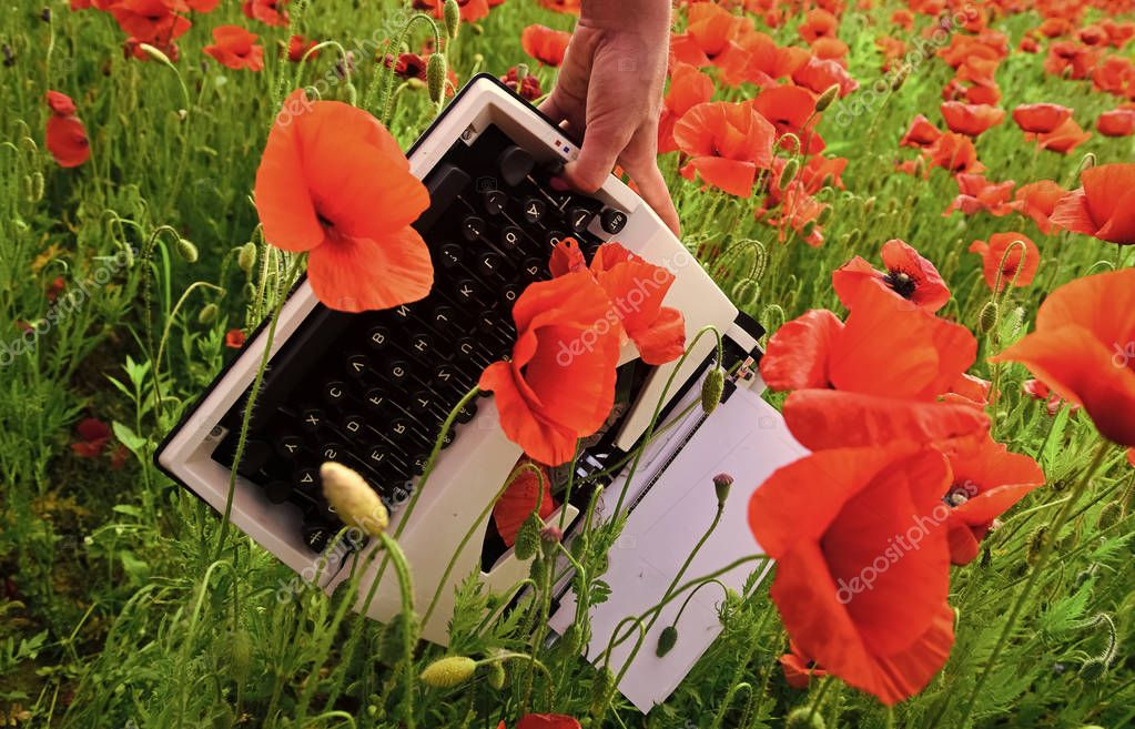 Poppy, new technology, Remembrance day.