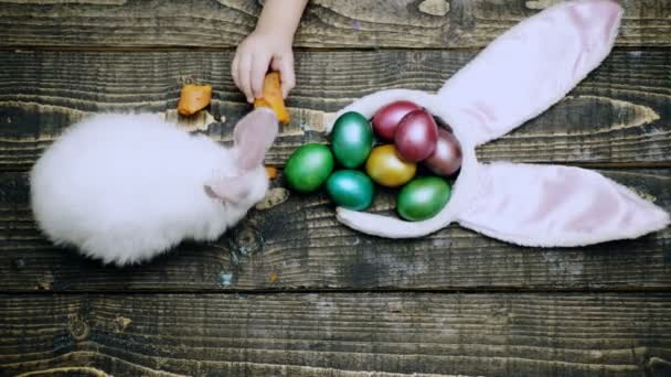 Easter eggs on wooden background. Close up of a boys hand that feed hare with carrot on a wooden table with Easter eggs. Happy Easter spring time. Rabbit with eggs on wooden background.