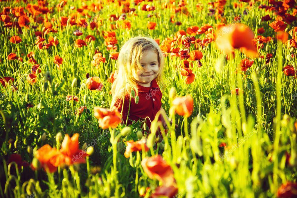 cute little boy on poppy field in hot summers