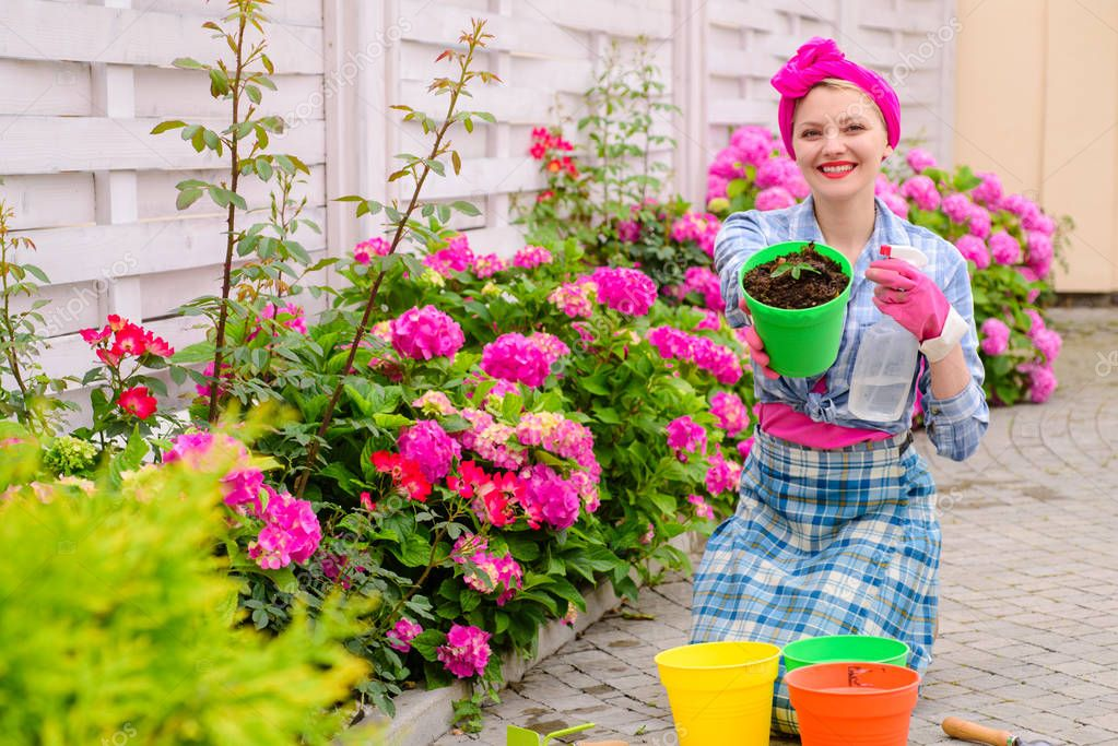 woman care of flowers in garden. hydrangea. Spring and summer. Flower care and watering. soils and fertilizers. happy woman gardener with flowers. Greenhouse flowers. Making your life colored