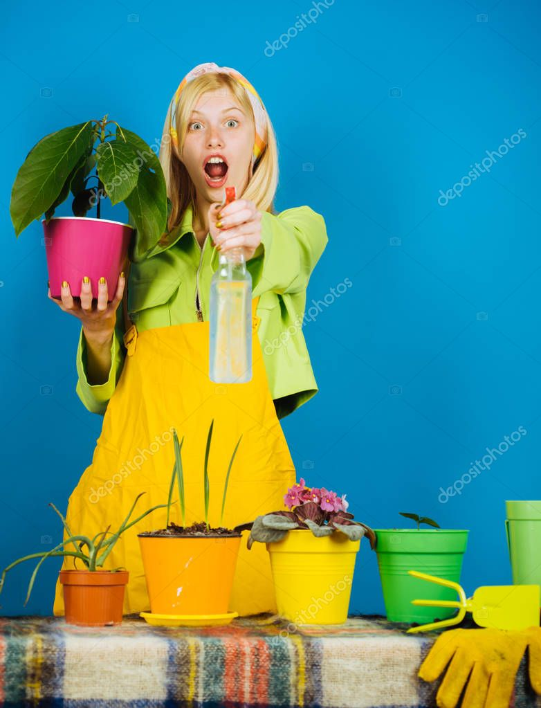 Woman planting flowers in pot. Watering flowers. Gardener woman planting flowers. Cute blonde gardening at isolated background.