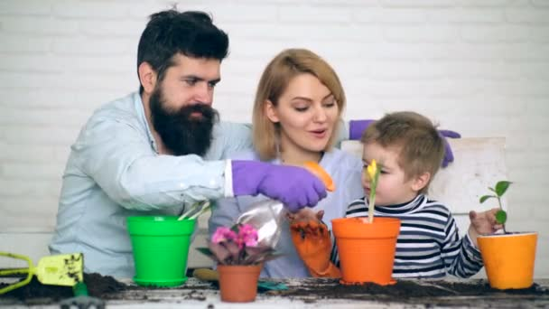 Father pours the flowers that have just been planted by his son and mother. Concept of planting flowers. Family plant the flowers.