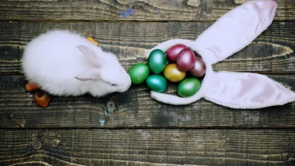 Veselé velikonoce. Králíci s velikonoční vajíčka na dřevěné pozadí. Velikonoční vejce roztomilý zajíček. Roztomilý velikonoční zajíček s barevnými vejci dřevěné pozadí