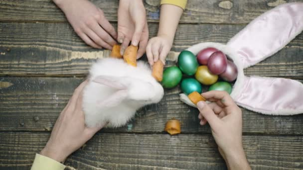 Top view of the familys hands that feed Easter hare on wooden table. Happy easter. Happy family are preparing for Easter. Easter eggs on wooden background.