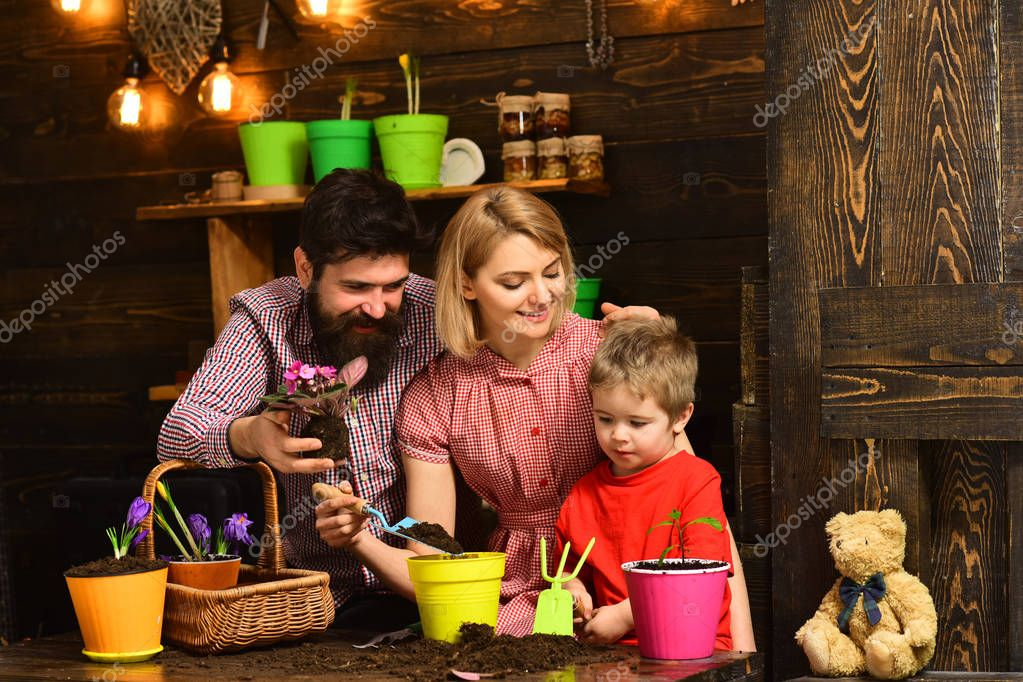 woman, man and little boy child love nature. happy gardeners with spring flowers. Family day. Greenhouse. Father and son with mother. Flower care watering. Soil fertilizers. Gardening