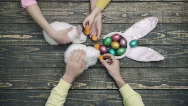 Velikonoční zajíce a vajíčka na dřevěný stůl. Veselé velikonoce. Detail z rukou, zásobující velikonočních králíků. Krmení zvířat s mrkví. Rodina, příprava na Velikonoce.