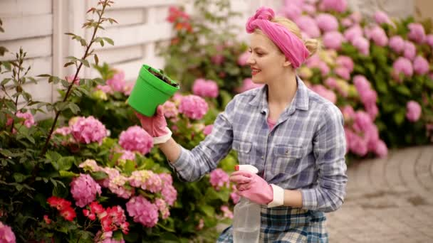 Girl plants a flowers in the garden. Flower pots and plants for transplanting. Woman planting flowers in pot with dirt or soil. Watering flowers in garden centre. Unbelievably beautiful lush buds.
