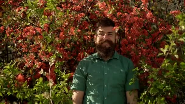 Adult funny man face grimace surrounded by blooming flowers. Emotions and facial expxression. Hipster enjoy scent of flowers in spring. Man in background of red flowers. Spring nature and vacation.