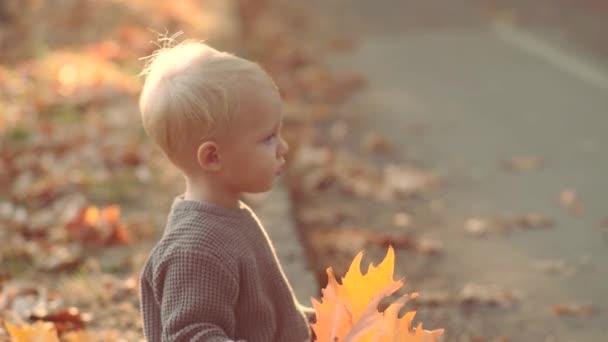 schöne Herbst Kind auf Herbst Natur Hintergrund. Kinderherbst. Spielen im herbstlichen Wald. kleiner Junge im herbstlichen Garten.