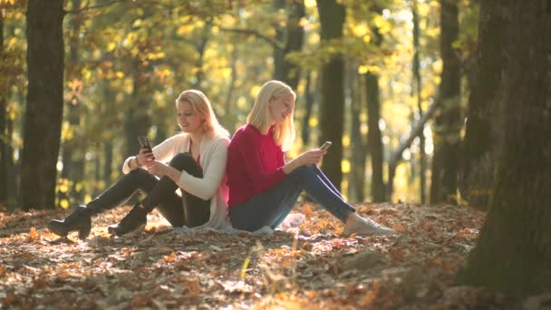 Two girls using smart phone. Warm Autumn sunny weather. Outdoor portrait of girls in autumn. Waiting in autumn park. Autumn girl.