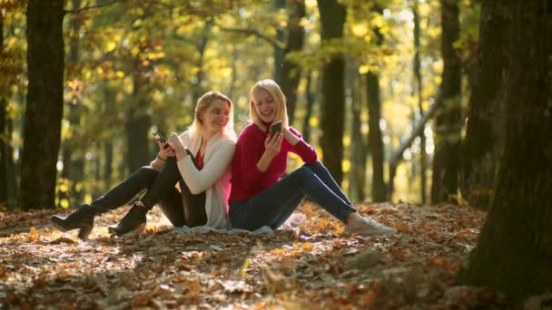 Business outdoor. Working in nature. Girls with phone. Two girls using smart phone. Message. Autumn portrait of beautiful students in the park. Fall foliage.
