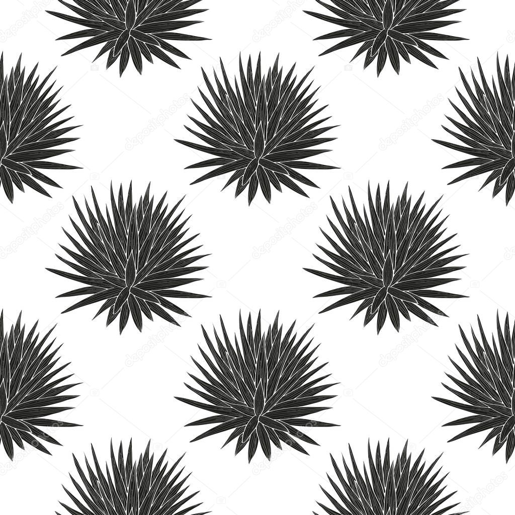 Yucca. A plant, a bush. Black silhouette on white background. Sketch. Wallpaper, texture, seamless.