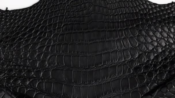 Abstraktní pozadí bezešvé krokodýlí černé kožené textury