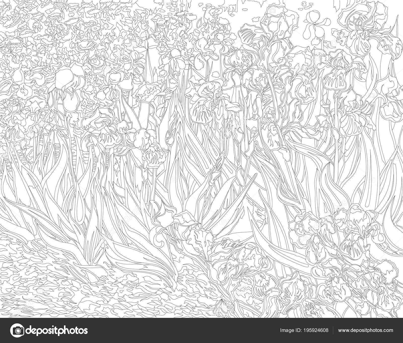 Irises 1889 Vincent Van Gogh Adult Coloring Page Stock Photo Image By C Rawpixel 195924608