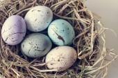Fotografie Closeup of easter eggs