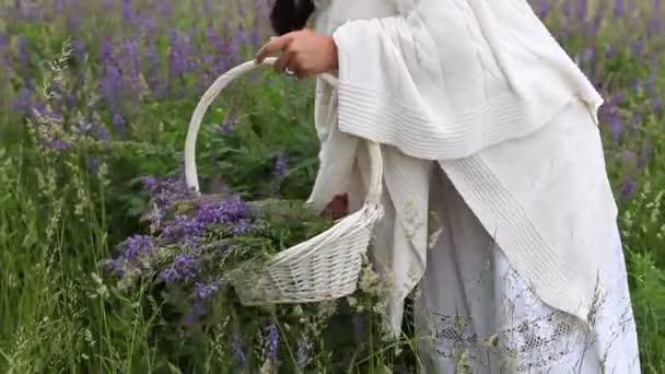 Žena sbírá šeříkové květy v proutěném koši na louce