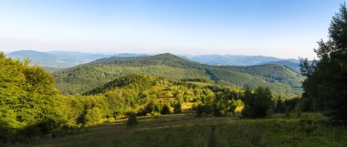Traveling by the Carpathians. Polonyna Runa, Gostra, and other peaks. Spring, Summer and Autumn rest in the Carpathians. Green, Blue colors. Forest and meadows