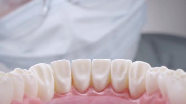 Zubař v brýlích kontroluje zuby