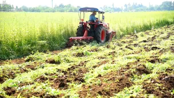 Farmer használata traktor beépítése a zöldtrágya