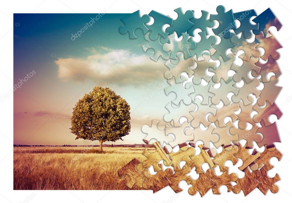 Isolated tree in a tuscany rural scene (Italy) - environmental conservation concept image in jigsaw puzzle shap