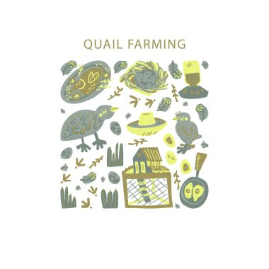 Quail farming hand drawn square frame. Vector handdrawn isolated rectangle concept
