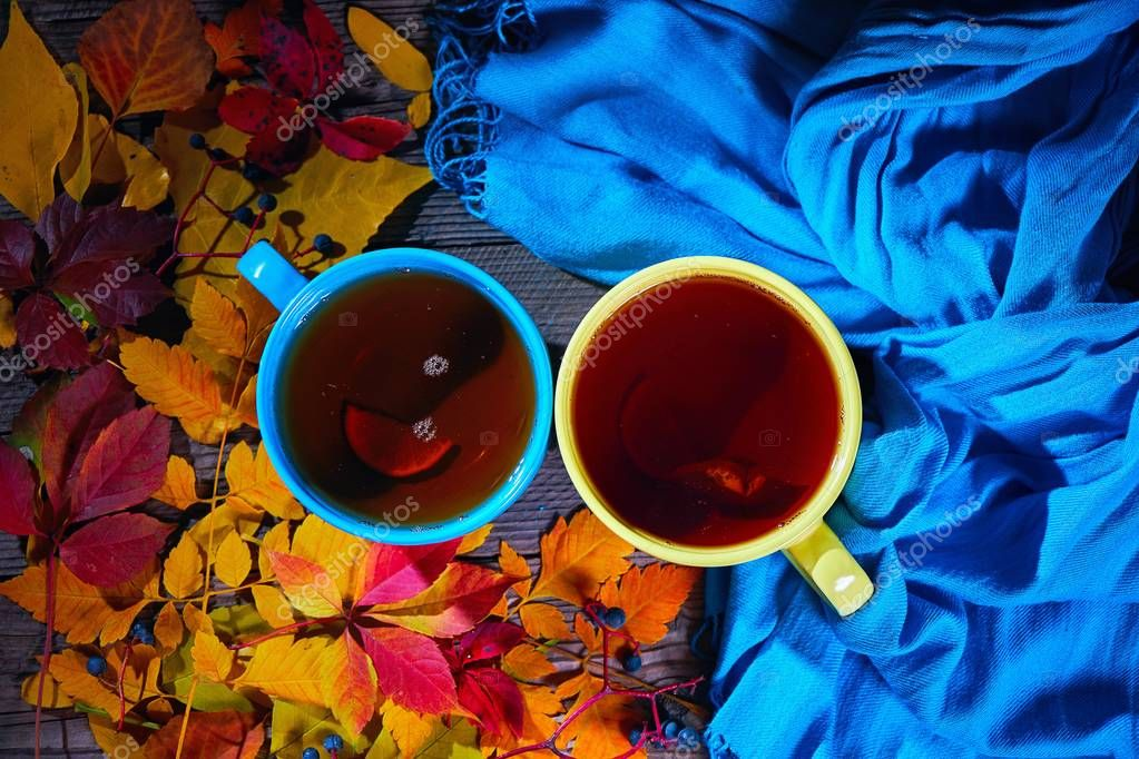 Cololrful autumn leaves, cups of tea and blue scarf, top view