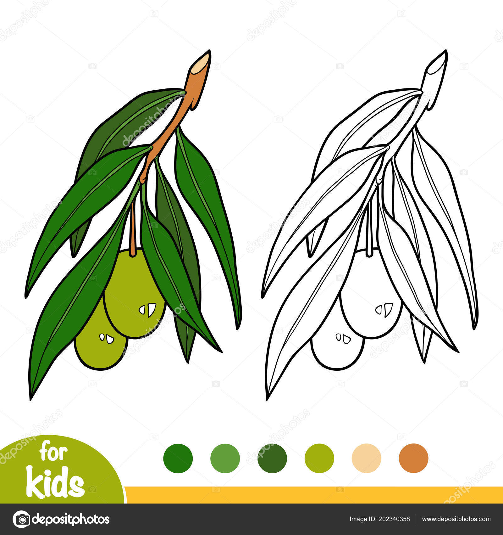 Coloring Book Children Olive Tree Branch Stock Vector