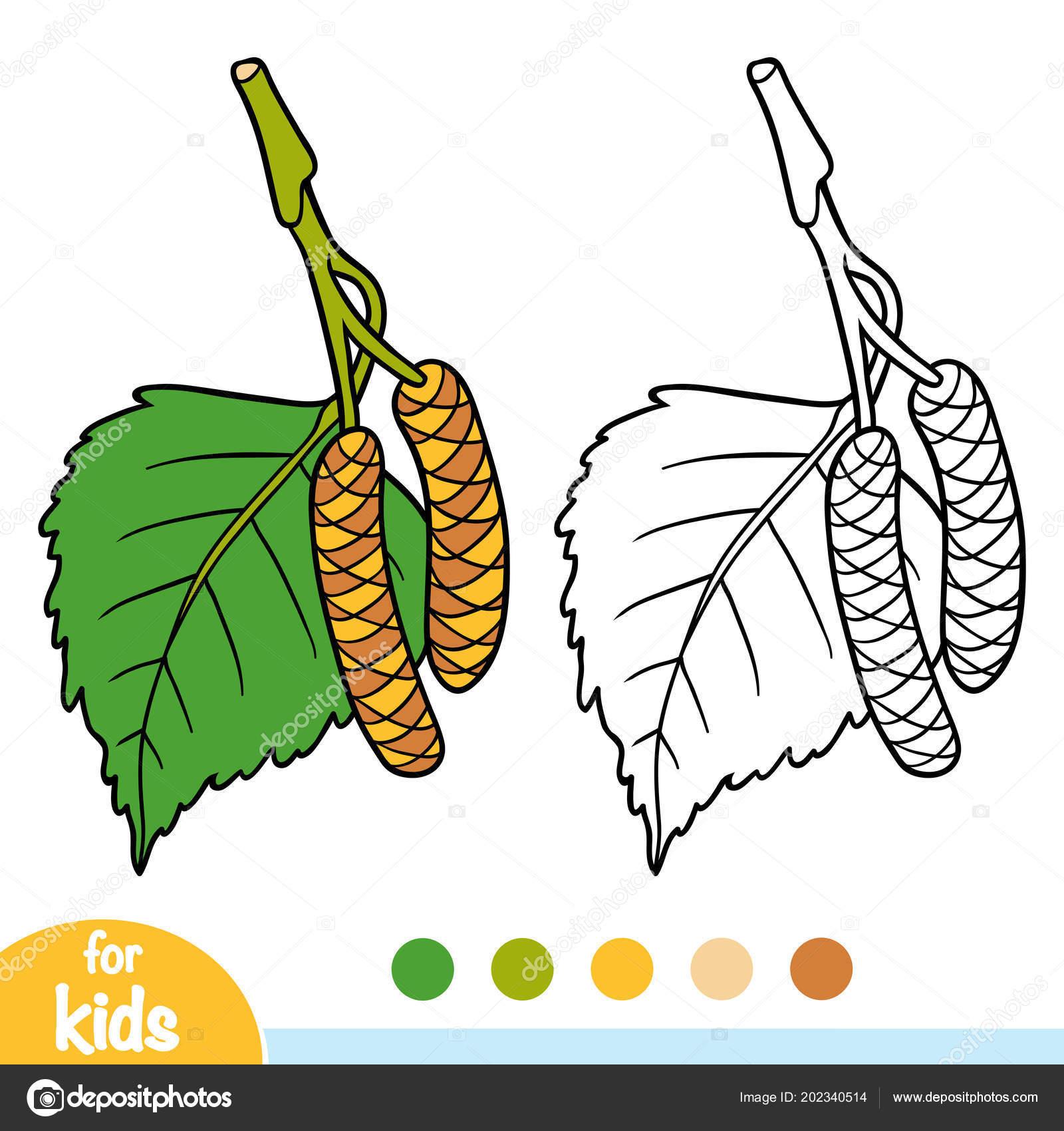 раскраска детей листьев березы векторное изображение