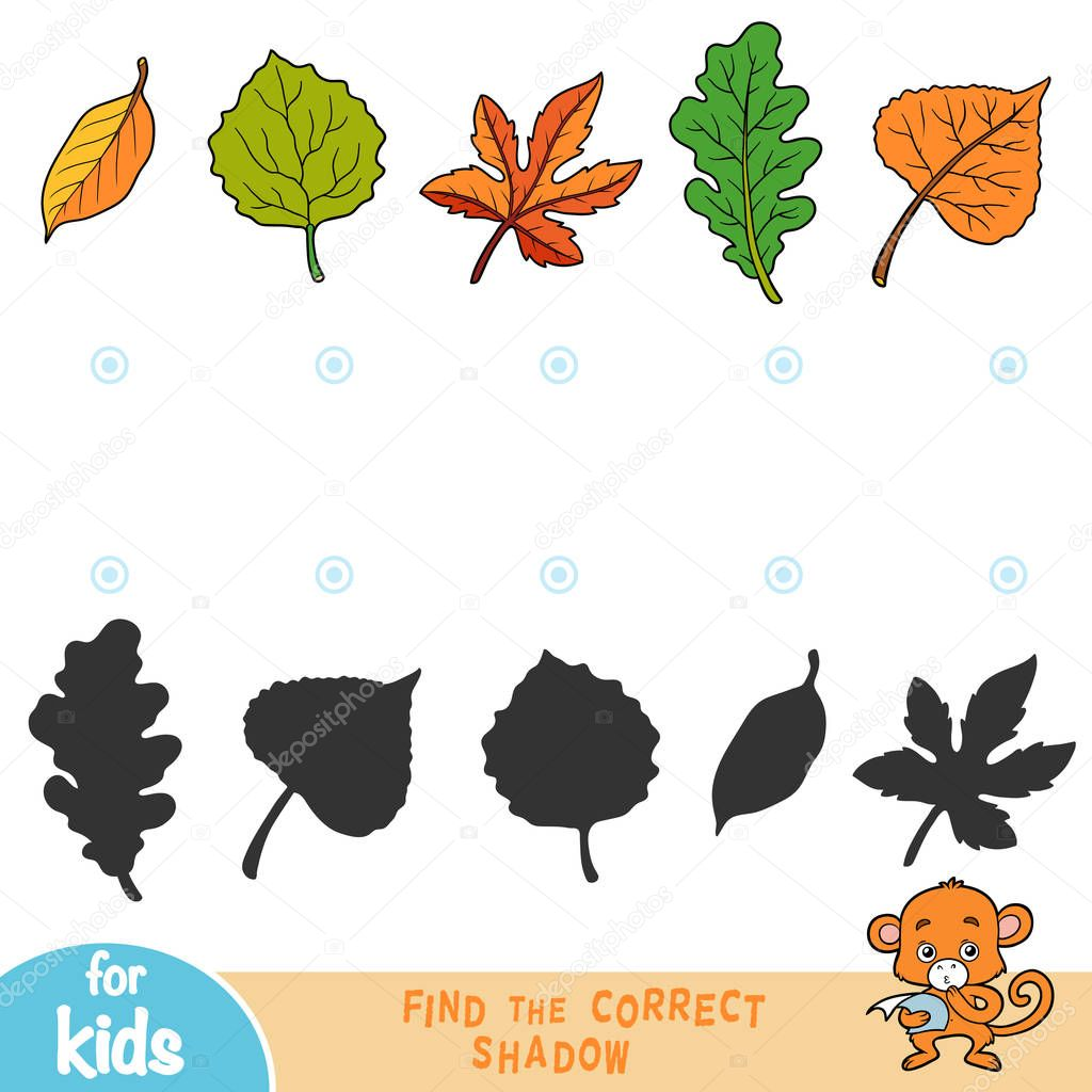 Find the correct shadow, education game for children, set of leafs
