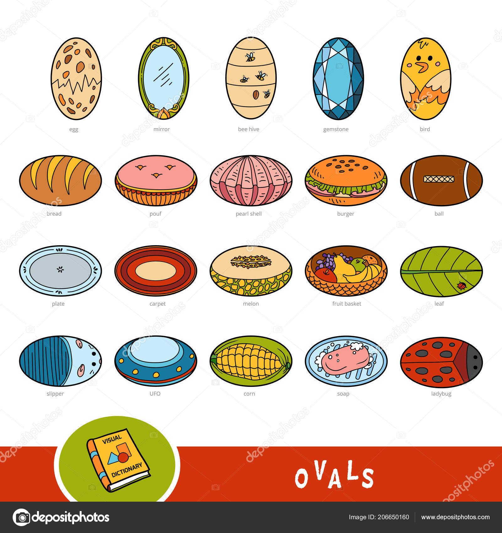 colorful set oval shape objects visual dictionary children geometric