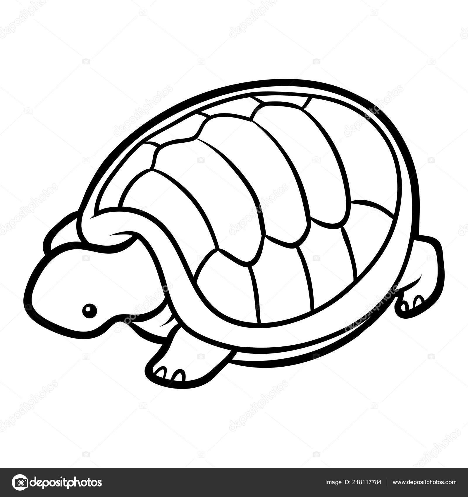 Coloring Book Children Tortoise — Stock Vector © ksenya_savva #218117784