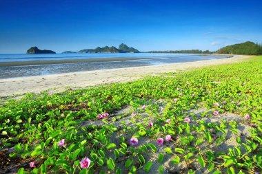 Ao Manao Beach in Prachuap Khiri Khan Province Thailand