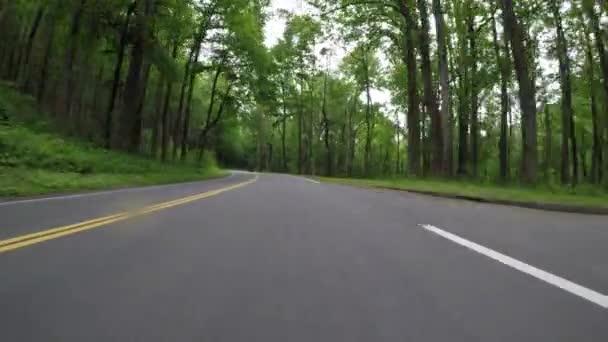 Jízda zeleným lesem na začátku léta v pohoří Severní Karolína