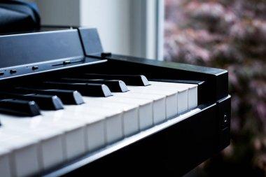 close-up of keyboard of a piano