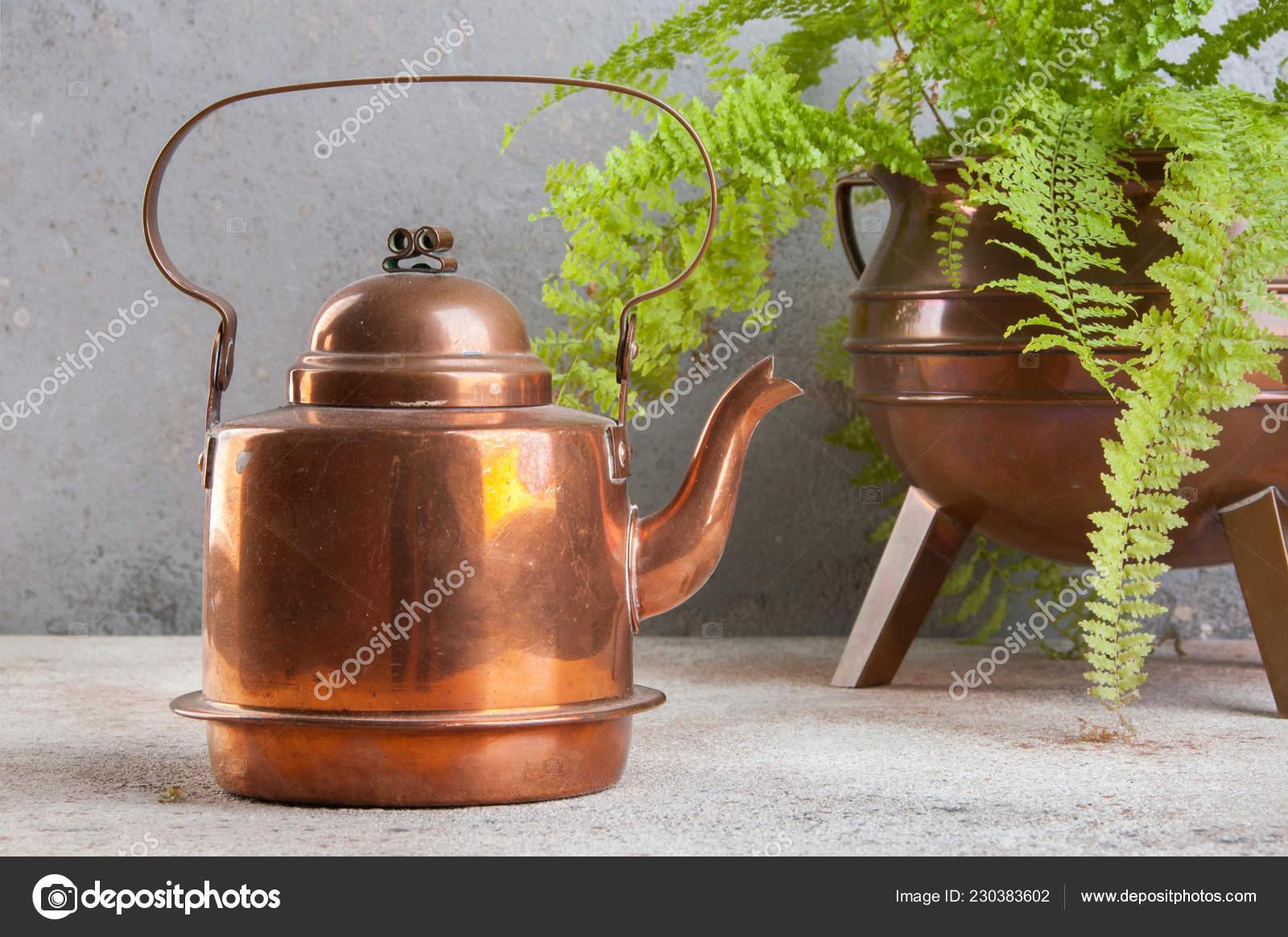 Vintage Copper Kettle Green Plant Copper Flower Pot Concrete Background \u2014 Stock Photo & Vintage Copper Kettle Green Plant Copper Flower Pot Concrete ...