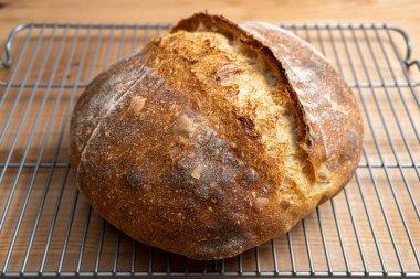 Freshly baked homemade loaf of sourdough bread