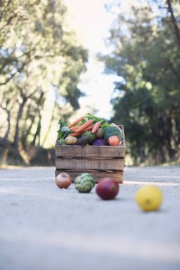 Composition of fresh organic vegetables photographed in nature with wooden basket in the background.