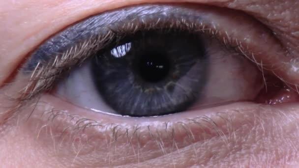 Woman blue eye ball closeup macro  with reflections and shine 06