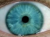 Makroaufnahme eines blauen menschlichen Auges